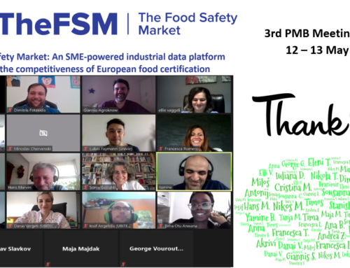 TheFSM 3rd Project Meeting (12-13 May 2021)